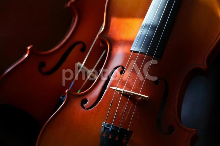 バイオリン横位置の写真