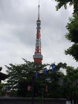 Tokyo Tower a little up!
