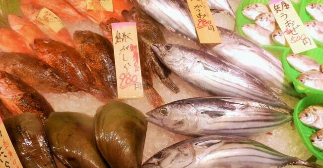 Fresh fish counter, fish market, fish shop
