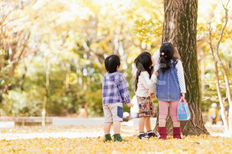 秋の公園で遊ぶ3人の子供たちの写真