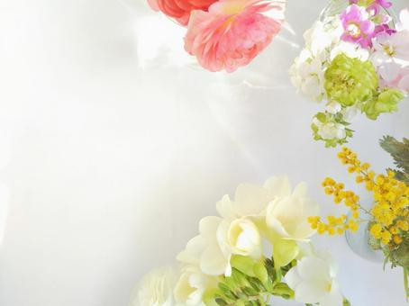 Spring flower botanical background frame