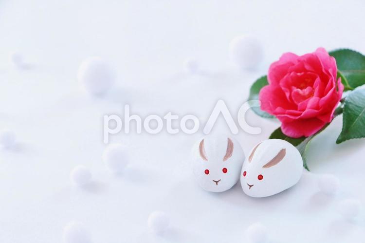 雪うさぎのフレームの写真