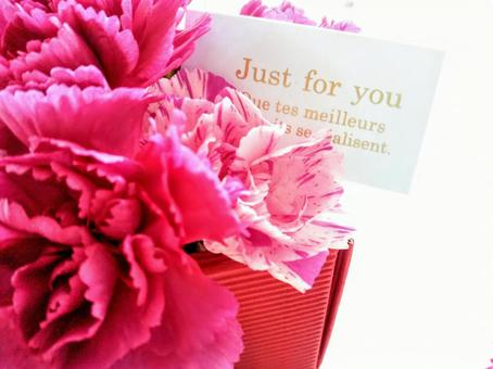 Carnations and Message Cards Mother's Day Gifts Presents