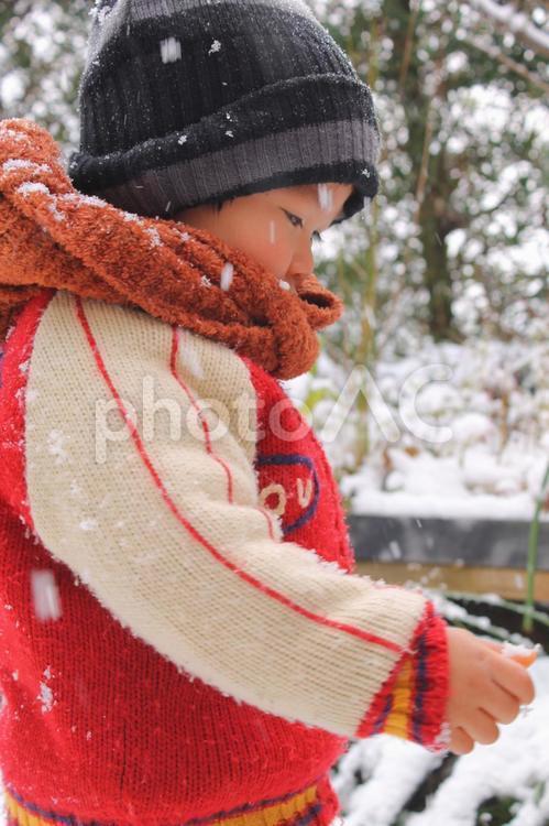 子供の雪遊びの写真