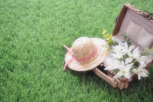 Straw hat and trunk