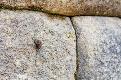 마추피추의 석벽을 포복 달팽이