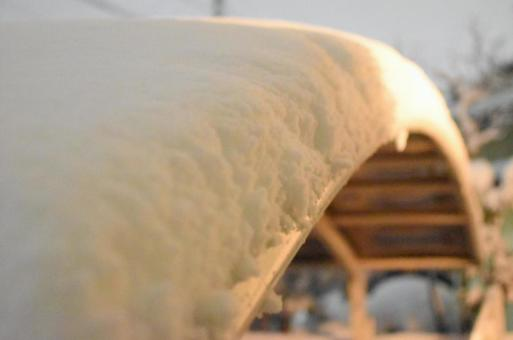 Carport snow