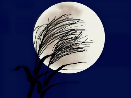 Full moon and pampas grass_2
