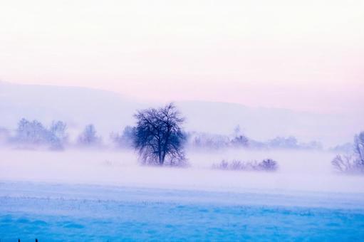 冬季景觀8