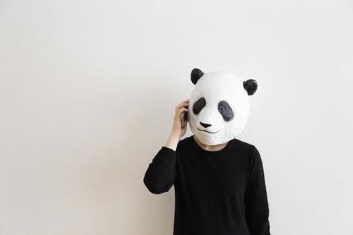 Mr. Panda to call