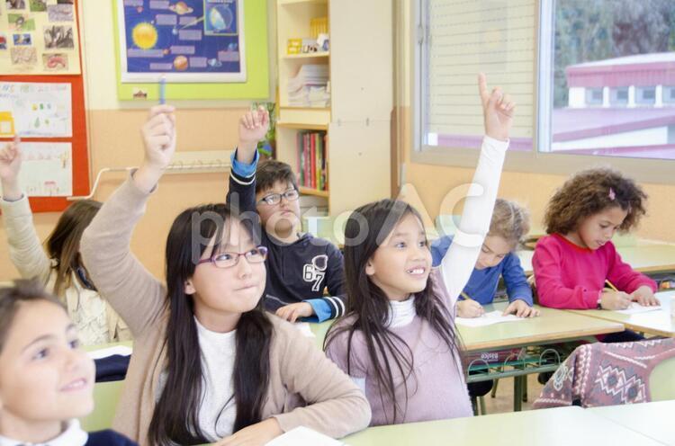 挙手する子どもたち4の写真