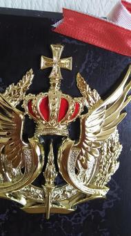 Award shield