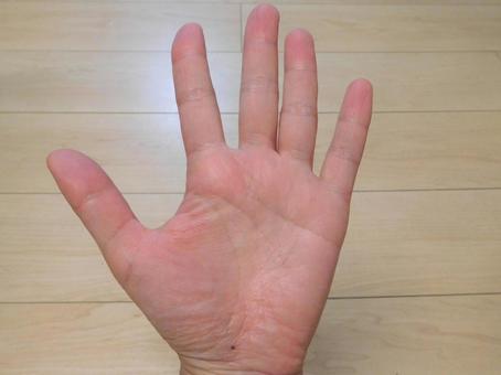 여성의 손바닥