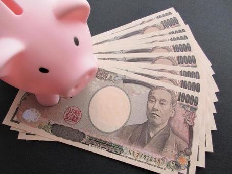 Piggy bank and money (49)