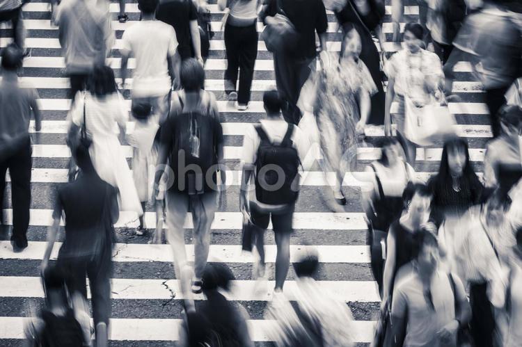 横断歩道を渡る人々の写真