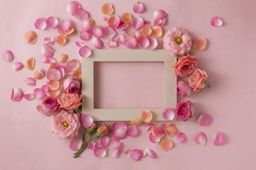 핑크 장미 꽃잎 프레임