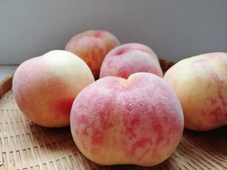 Peach Kanoiwa White Peach 10
