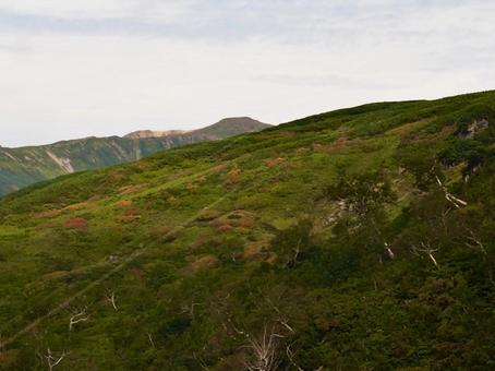 다이 세츠 산 아사히 다케 기슭 첫 단풍