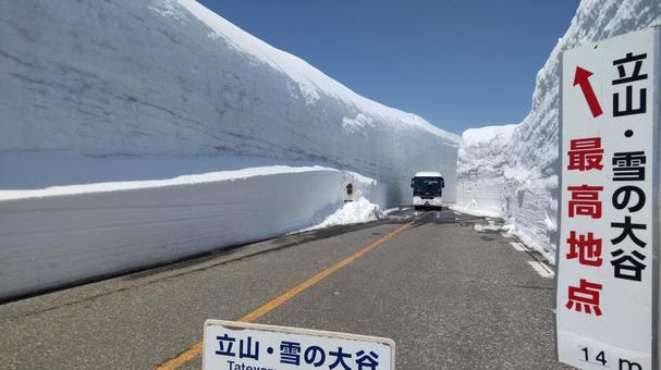 다테야마 눈의 오오타니