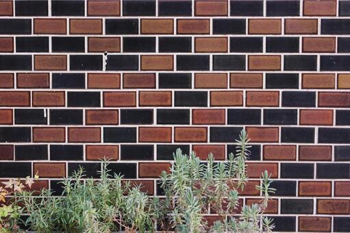 Brick wall 55