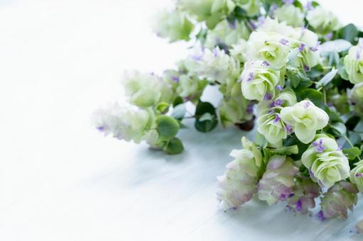 Bouquet of oregano kent beauty and English newspaper