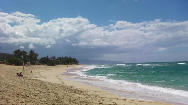 바다 푸른 바다 백사장 하와이 노스 쇼어 파 푸른 하늘