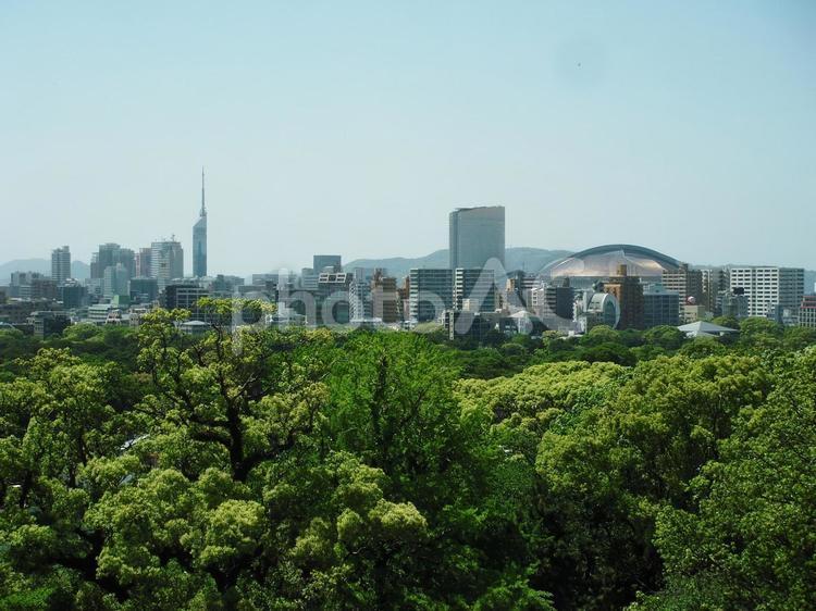 福岡の街並みとヤフードームと福岡タワー3の写真