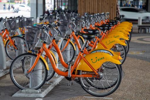 대만 자전거 - 사용자 자전거