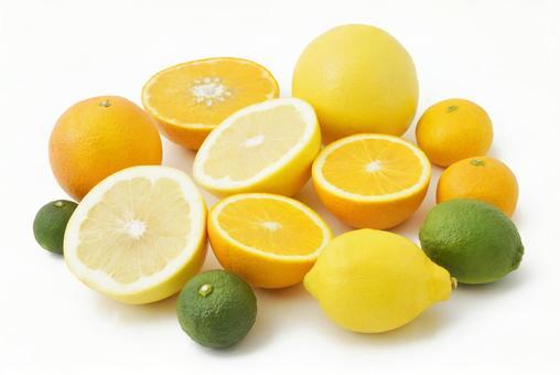 柑橘类 02