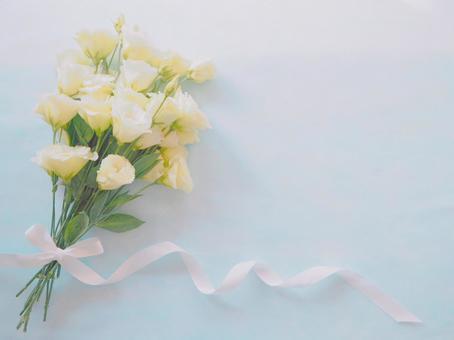 Bouquet of cute white Turkish bellflowers