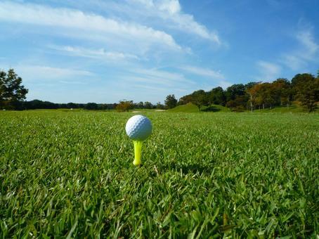Golf -16