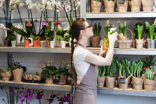 Florist woman 3 spewing on potted plants