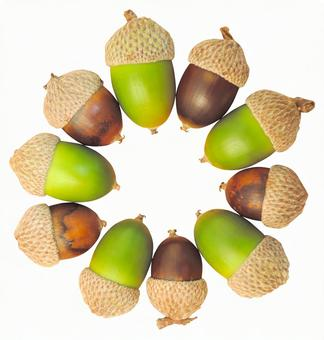 Clipping material Acorn ring