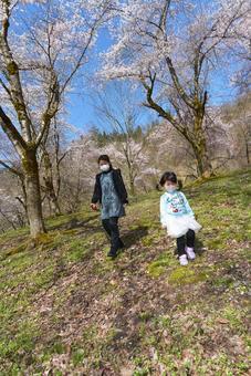 Spring walk 05