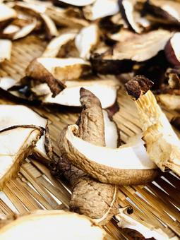 생활의 한장 건조 표고 버섯
