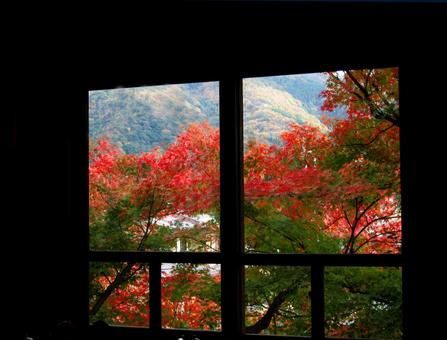 Kyoto Autumn leaves Yoshidayama