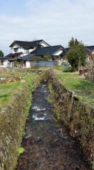 Landscape Spring stream