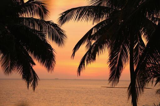 Beach resort 280