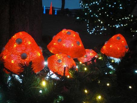 Illumination mushrooms