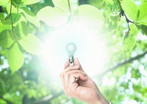 Eco and light bulb green inspiration idea