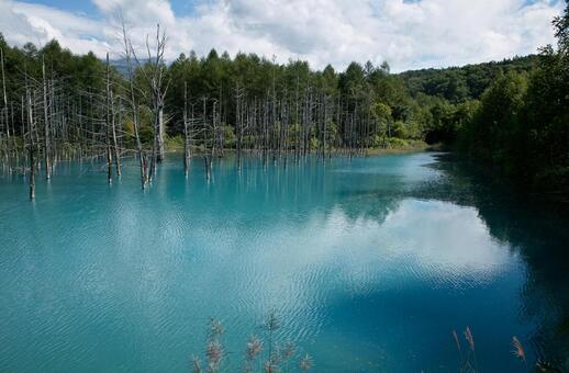 Biei · Blue Pond 2