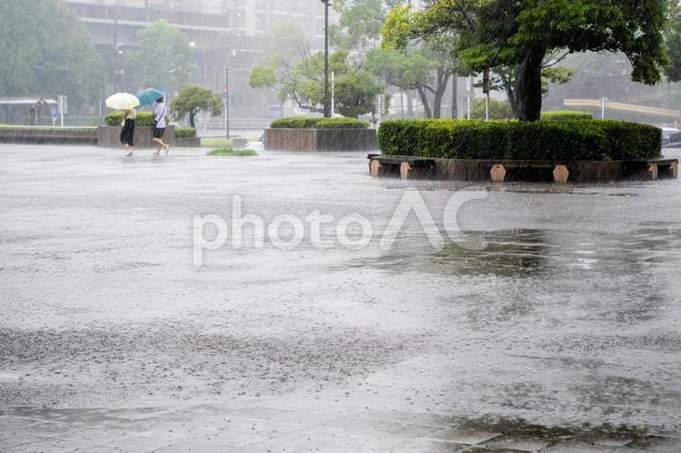 激しい雨の降る街 傘をさして歩く人の写真