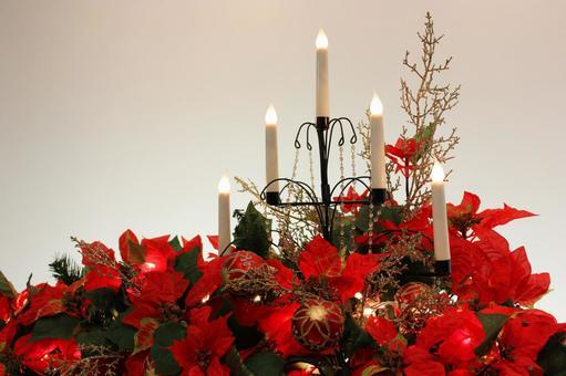 一品红和蜡烛