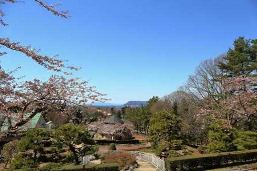 Mount Hakodate seen from Trappistine