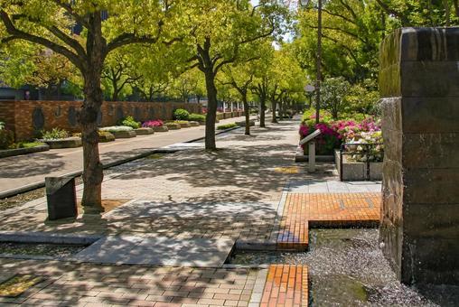 고베 東遊園 지역의 가로수 길