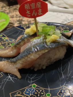 Conveyor belt sushi in Hokkaido pacific saury from Nemuro