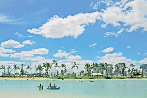 하와이 해변 _A01