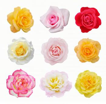 Set of roses * See below for the cutout path