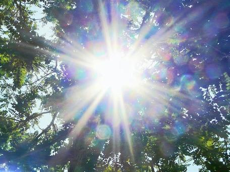 Glitter of the sun The brilliance of hope from nature where the sunshine is dazzling Summer sunshine Positive energetic brilliance