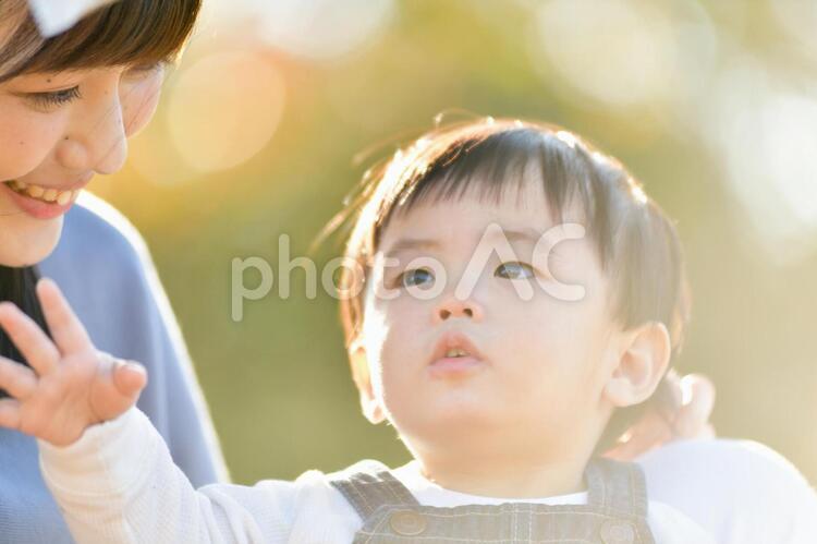 屋外で遊ぶ親子の写真